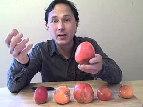 Five Varieties of Persimmons aka Kaki Fruit