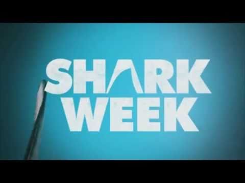 Shark Week Begins July 31st @ 9pm! *