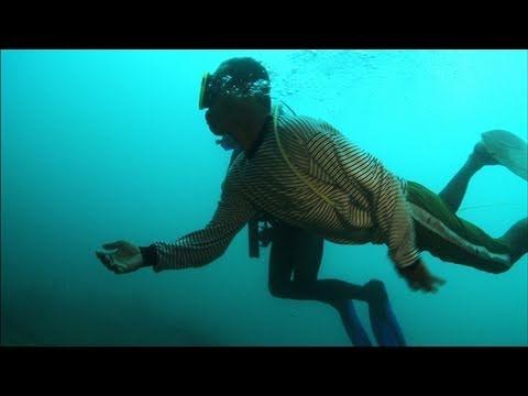 Dive Detectives:Submarine Graveyard: Sneak Peek
