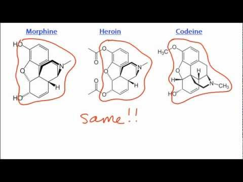 D.3.3 Compare the structures of morphine, codeine and diamorphine (heroin) IB Chemistry SL
