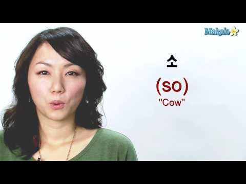 "How to Say ""Cow"" in Korean"