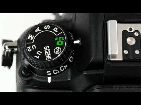 Nikon D7000 overview: Using the auto mode | lynda.com