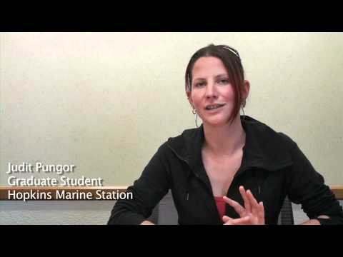 Judit Pungor on her education, Sargasso Sea Expedition 2011