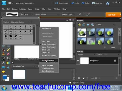 Photoshop Elements 9.0 Tutorial The Brush Tool Adobe Training Lesson 6.2