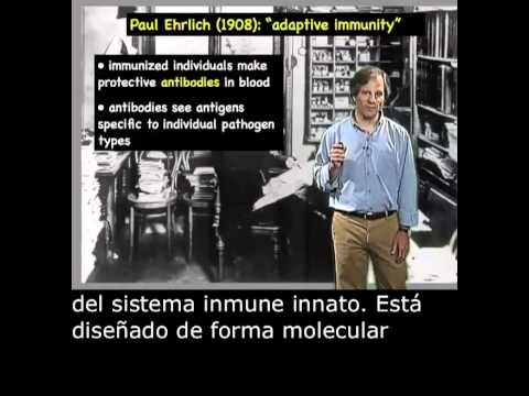 Ira Mellman Part 1: Cellular Basis of the Immune Response Spanish Subtitles