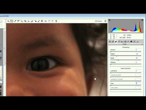 Adobe Photoshop CS5 Extended Advanced Ch 8 ADVANCED RAW FILE EDITING   Adding Grain & Reducing Noise