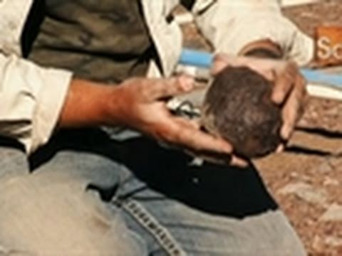 Meteorite Men- Strange Rock