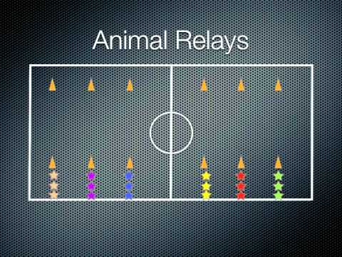 Physical Education Games - Animal Relays
