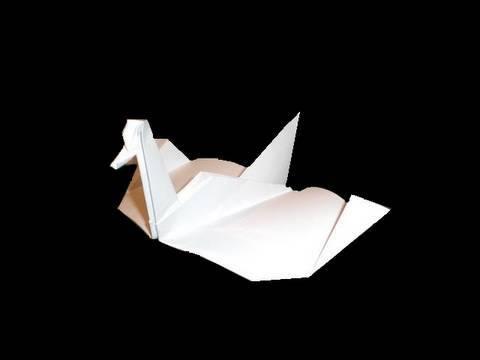 Origami: gliding swan
