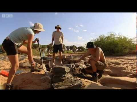 Lion Paws & Waterholes - Mission Africa - BBC