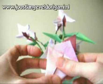 Flower with Stamen