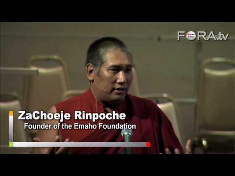 Accepting Life's Struggles - Za Rinpoche