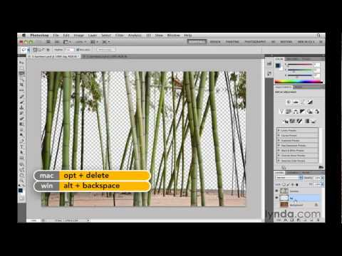 Photoshop: Using the Similar and Grow commands | lynda.com tutorial