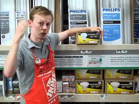 130V Light Bulbs - The Home Depot