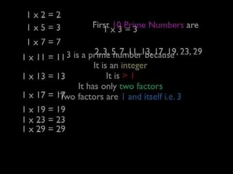 Arithmetic Integers 12
