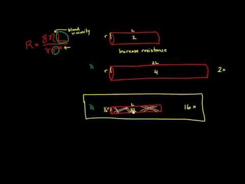 Adding resistance in series and parallel in a human body