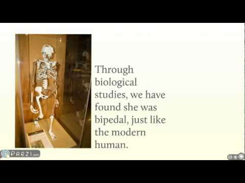 Anthropology, How Does It Intersect with Biology