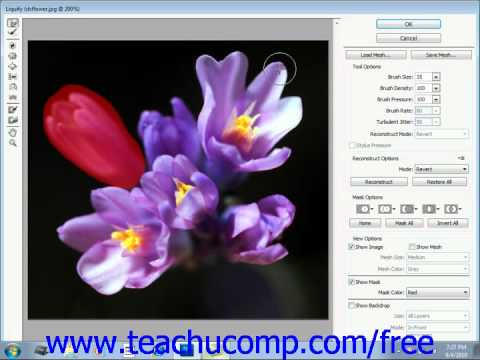 Photoshop CS5 Tutorial The Liquify Command Adobe Training Lesson 14.11