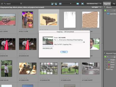 InfiniteSkills Tutorial | Photoshop Elements 10 Training - Get Photos from Camera
