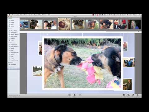 Holiday Slideshow: EP 217: Digital Photography 1 on 1
