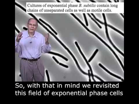 Richard Losick Part 3: Stochasticity and Cell Fates English Subtitles