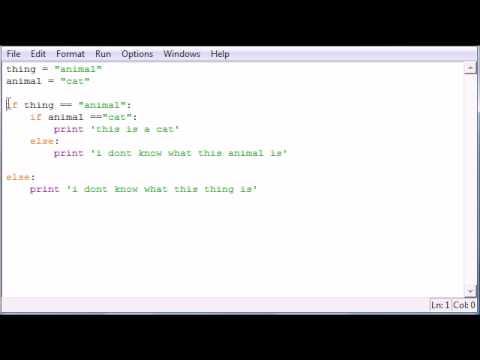 Python Programming Tutorial - 22 - Nesting Statements