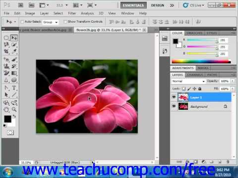 Photoshop CS5 Tutorial Copying & Pasting Pixel Selections Adobe Training Lesson 7.11