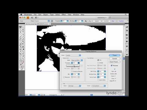 Illustrator: Making raster-based adjustments | lynda.com