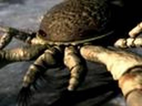 Animal Armageddon: Sea Scorpions