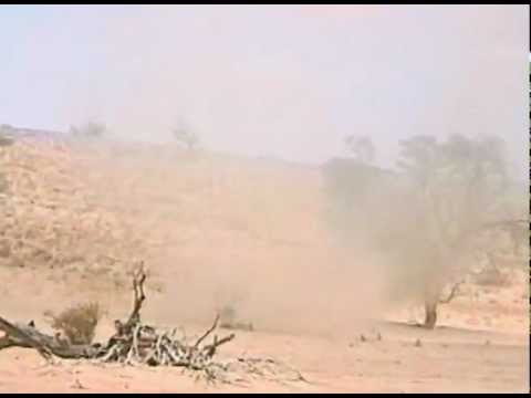 A dust devil in the Kalahari Desert, Africa