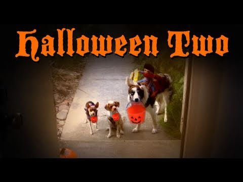 Halloween Two- Dog Tricks