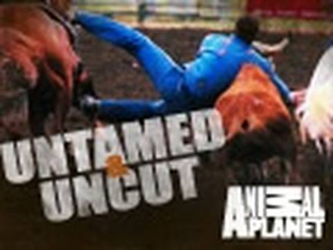 Untamed & Uncut: Sundays at 9PM e/p on Animal Planet*