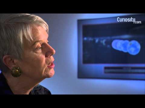 Jill Tarter: How Many Radio Telescopes?