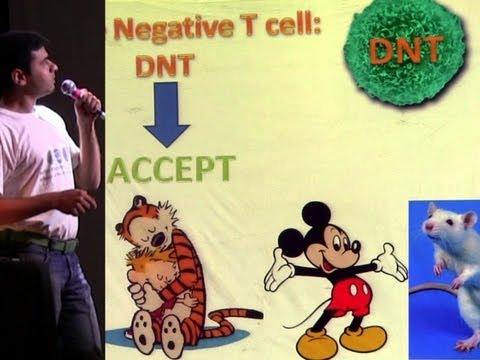 Transplantation Immunology: Do Two Negatives Make A Positive? (Science Slam)