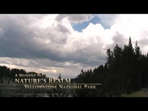 A Moment in Nature's Realm Episode 4: Yellowstone National Park