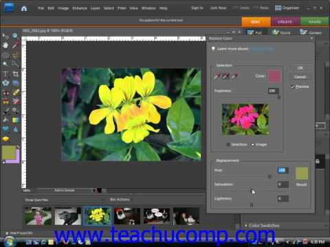 Photoshop Elements Tutorial Replacing Color Adobe Training Lesson 14.9