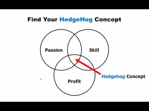 The Focussed 4-Step Success Formula - Part 1: Find Your Hedgehog Concept