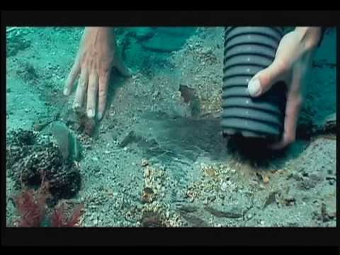 UNESCO Convention on the Protection of the Underwater Heritage