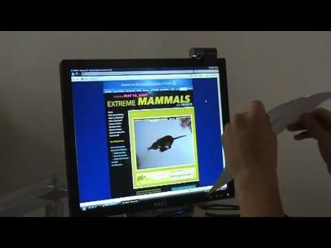 Extreme Mammals at AMNH - Extreme 3D