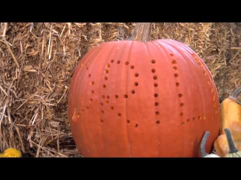 Pumpkin Carving Ideas Using Power Tools