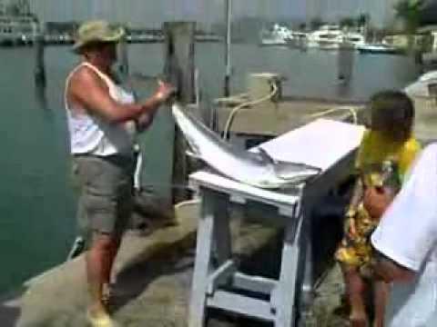 Baker's Haulover Marina Miami Beach Florida -low cost fun