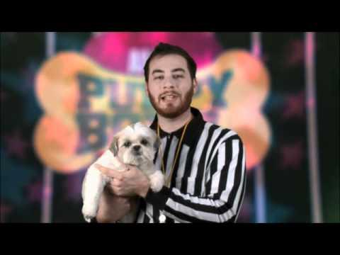 Puppy Bowl: Teddy Hilton for Puppy Bowl VIII?
