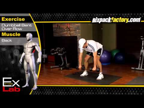 Dumbell Bent Over Row : Best Back Exercises ( Lat exercises )