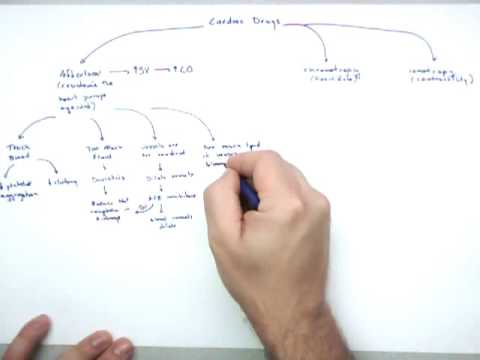 Cardiac Drugs Part 1 Intro and Afterload