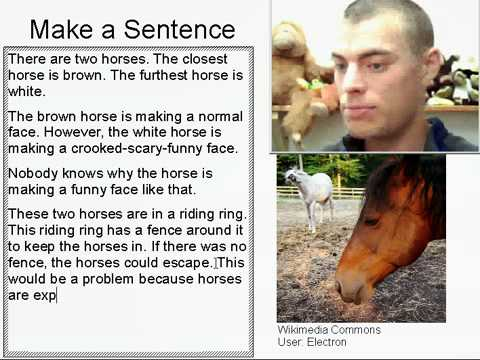 Learn English Make a Sentence and Pronunciation Lesson 40: Funny Horse
