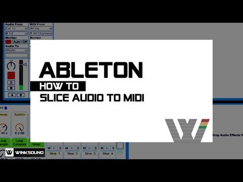 Ableton Live: How To Slice Audio to MIDI | WinkSound