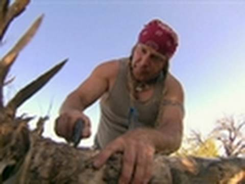 Dual Survival - Wonders of Agave | Split Up