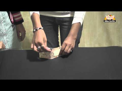 Learn a Trick - Balance a coin on the note