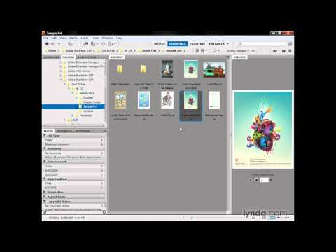 Illustrator: Introducing Adobe Bridge | lynda.com