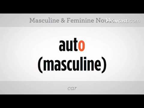 Learn Spanish / Masculine and Feminine Nouns